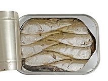 Open can of Sardines in soya oil Royalty Free Stock Photos