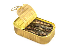 Open can of sardines on white. Royalty Free Stock Image