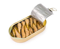 Open can of sprats Royalty Free Stock Image