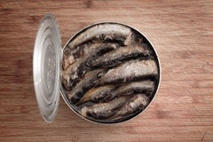 Open can of sprats Stock Images