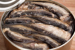 Open can of sprats Stock Photo