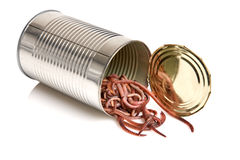Open can of worms. Metaphor for the phrase opening up a can of worms Royalty Free Stock Images