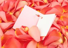 Open card on petals of roses. 