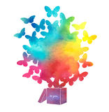 Open cardboard box with colorful butterflies flying.Gift-butterf Royalty Free Stock Image