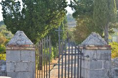 Church gate with a cross. Open church gate with a cross with a path between lines of trees Stock Image