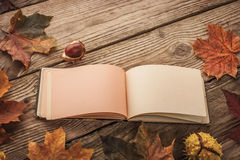 Open clear vintage notebook surrounded by maple leaves and chestnuts with film filter effect horizontal. Clean open vintage notebook surrounded by autumnal maple royalty free stock photos