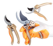 Pruners / pruning shears Royalty Free Stock Image