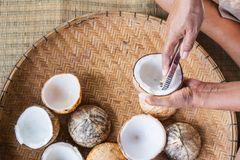 Open coconut with coconut peel and hand. On bamboo mat Stock Photography