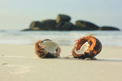 Open coconut on white sand in beach Stock Photo