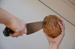 Open a coconut. A woman trying to open a coconut with a large knife. Only the hands are visible Royalty Free Stock Photo