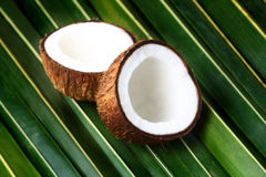 Open coconuts. On a palm leaf background Stock Photos