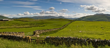 Open countryside Royalty Free Stock Images