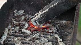 Open de grill het programma stock footage