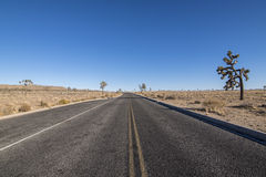Open desert road Stock Photo