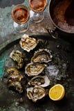 Open desvainó ostras frescas con el limón y Rose Wine imagen de archivo