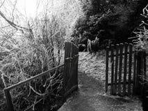 Open deuren van verlaten huis in de winter in stad Royalty-vrije Stock Foto's