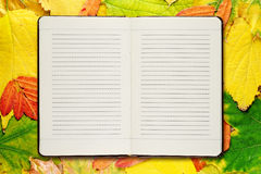 Open diary on autumn leaves Stock Photography