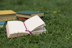 Open diary on field with green grass Stock Image