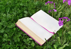 Open diary lying in clover and primroses Royalty Free Stock Photos