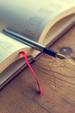 Open diary with one fountain pen in it Royalty Free Stock Images