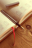 Open diary with one fountain pen in it 2 Royalty Free Stock Image
