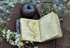 Free Open Diary With Empty Pages, Black Apple And Blooming Branch On Planks Royalty Free Stock Photography - 189542027