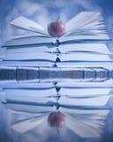 Open die boeken in water worden weerspiegeld Het Verhaal van de winter Stock Afbeelding