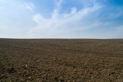 Open dirt farmland. Stock Photography