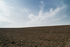 Open dirt farmland. Royalty Free Stock Photo