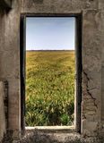 Open Door. Of a dilapidated old house, with a rice field at the bottom royalty free stock images