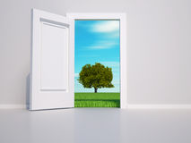 Open door Stock Photos