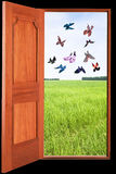 Open door with landscape and butterflies Royalty Free Stock Photos