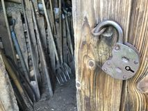 The open door of the old wooden shed. Inside are agricultural tools. A vintage padlock hangs in a loop on the door. The open door of the old wooden shed. Inside stock photo
