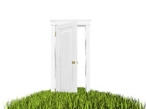 Open door to new world, grass carpet. On white background. Royalty Free Stock Image