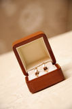 Open doos met huwelijks gouden dure ringen Stock Afbeelding
