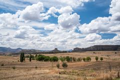 Open dry fields with trees. Open fields with trees on a sunny day with oncoming rain clouds Stock Photo