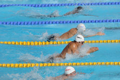 Open EDF 2010, breaststroke race Stock Photos