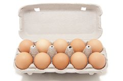 Open eggbox Stock Photography