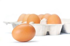 Open eggbox and egg Royalty Free Stock Image