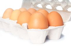 Open eggbox isolated on white. Background Royalty Free Stock Images