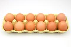 Open eggbox Stock Image