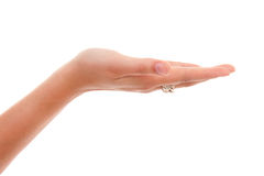 Open empty hand. Open empty woman's hand over white background royalty free stock image