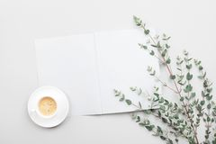 Open empty notebook, cup of coffee and eucalyptus leaves on gray table top view. Minimalistic working desk. Flat lay. Open empty notebook, cup of coffee and stock photo