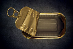 Open tin of tuna fish stock photo image of preserved for Empty sardine cans
