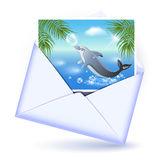 Envelope and card with image dolphin Stock Photos