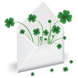 Open envelope with clover Royalty Free Stock Images