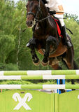 Open Equestrian Cup Stock Photo