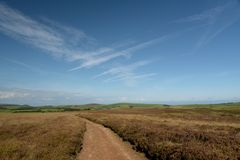 Moorland above Doone Valley, Exmoor, North Devon. Open expanses of heather and gorse moorland above Doone Valley near Malmsmead, Exmoor, North Devon royalty free stock photos