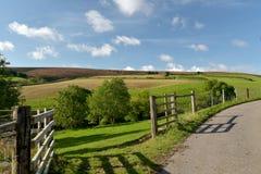 Moorland above Doone Valley, Exmoor, North Devon. Open expanses of heather and gorse moorland above Doone Valley near Malmsmead, Exmoor, North Devon stock photos