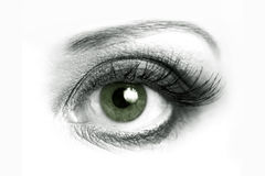 Open eye closeup Royalty Free Stock Photo